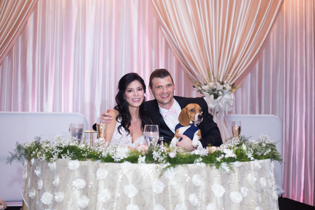 Leah Langley Photography- Orlando wedding photographer – Orlando multicultural wedding photography – Orlando wedding – central Florida wedding photography – Rosen Shingle Creek Wedding -dog at wedding